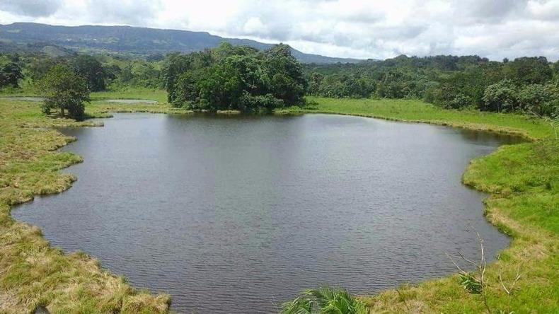 Procuraduría exige a Cortolima medidas urgentes para proteger el segundo humedal más grande del Tolima