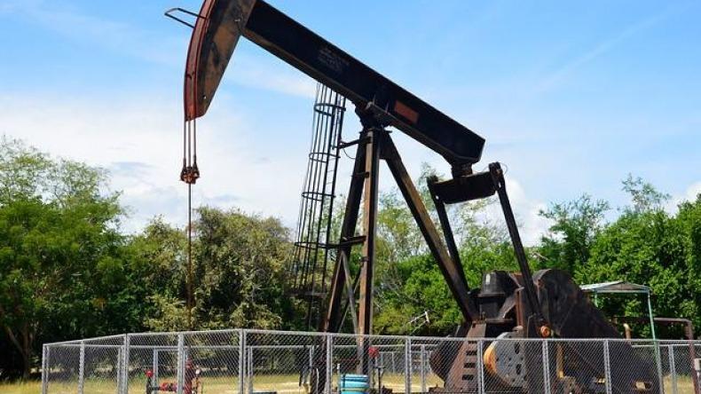 Indígenas de Ortega ganan tutela a la petrolera Hocol y evitan ser desalojados