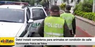 Embedded thumbnail for Policía del Tolima instaló comederos para animales en condición de calle en El Espinal