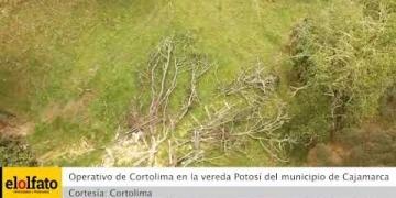 Embedded thumbnail for Autoridades sancionarán a un grupo de personas que extraían madera de manera ilegal en bosques de Cajamarca