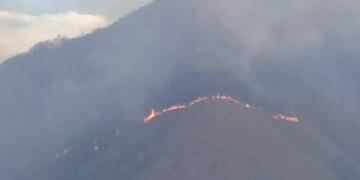 Embedded thumbnail for Incendio forestal en Alvarado se salió de control y ha consumido más de 1.000 hectáreas de bosque