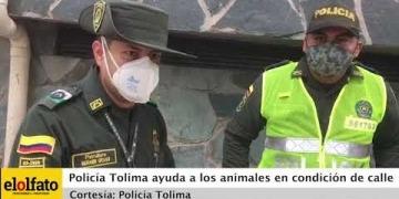 Embedded thumbnail for Policía del Tolima instala comederos para perros y gatos en condición de calle en Melgar