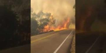Embedded thumbnail for Dramático video muestra cómo un gigantesco incendio forestal atravesó la vía Lérida – Venadillo