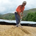 Los bloqueos afectan a más de dos millones de familias que viven de esto: Gremio cafetero