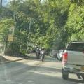 Comerciantes del Cañón del Combeima se quejan por cierres de la vía