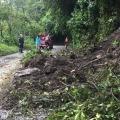 Más de 20 emergencias fueron atendidas este puente festivo en Ibagué