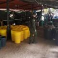 Autoridades desmantelaron laboratorio de cocaína en zona rural de Icononzo