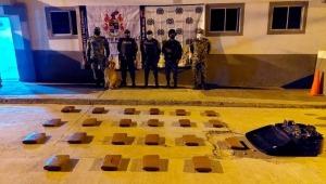 Perro antinarcóticos halló 30 kilos de marihuana en un bus en Cajamarca