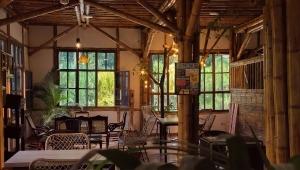 Cóndor Café & Hostal: una idea de universidad que se convirtió en un emprendimiento exitoso en Ibagué