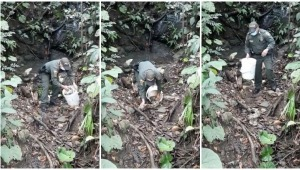 Policía rescató y liberó a una serpiente en el municipio de Falan
