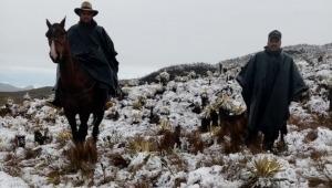Sigue la búsqueda de joven extraviado en inmediaciones del Nevado del Tolima
