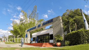 'Becas de rescate' regresarán a la Universidad de Ibagué para estudiantes con problemas económicos