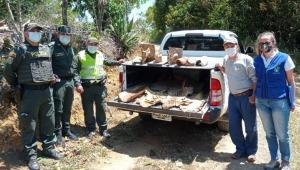 Incautan partes de cinco especies de fauna silvestre en Falan
