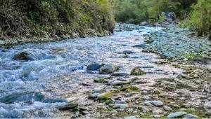 Consejo de Estado modificó el fallo sobre explotación minera en ríos Combeima, Coello y Cocora
