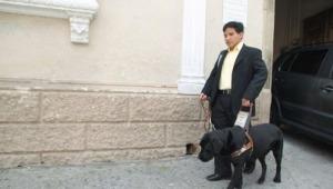 Más de 80 personas con discapacidad se encuentran vinculadas laboralmente con el Estado en el Tolima
