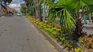 Intervendrán más de 100 parques y zonas verdes de Ibagué