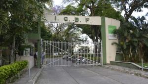 Designan nueva directora del ICBF en el Tolima