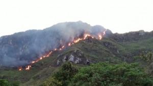 Emergencia en Melgar: autoridades atienden incendio forestal