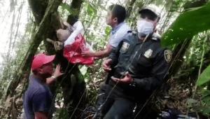 Policía liberó a un oso perezoso en zona rural de Villahermosa