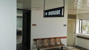 Experto pronostica incremento de muertes por COVID-19 en Ibagué