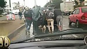 El amigo fiel: perro ayudó a empujar un carro varado