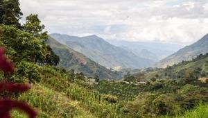 Deberán pagar más de $30 millones por explotar recursos naturales en Ibagué