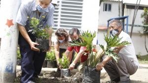 Alcaldía promoverá jornadas de embellecimiento de zonas verdes en otros 15 barrios de Ibagué