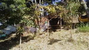 Invasiones siguen creciendo en Ibagué y afectando a la comunidad