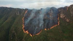 Cerca de 200 hectáreas de vegetación afectadas por incendio forestal en Melgar