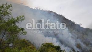 16 incendios forestales se han desatado en el mes de julio en Ibagué
