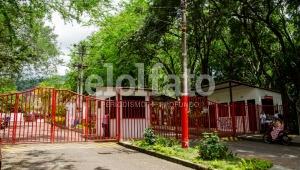 Universidad del Tolima ganó convocatoria de Minciencias para financiar proyectos de investigación