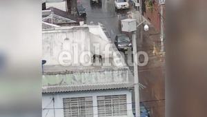 Denuncian presunto maltrato animal en una vivienda del barrio La Pola de Ibagué